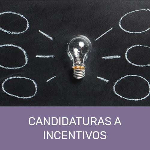 Candidatura a Incentivos Linha Virtual