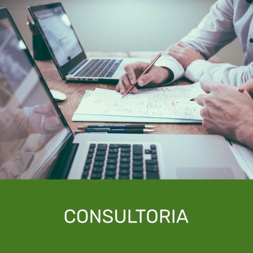 Consultoria Linha Virtual